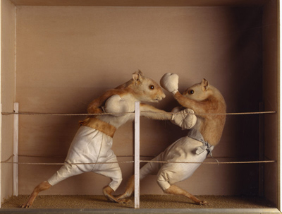 prize-fight1